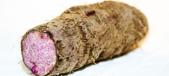 Want to Get Pregnant? Try Eating Yams, an Unlikely Fertility Superfood