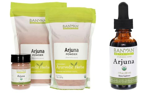 arjuna supplements