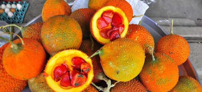 Gac Fruit: The Southeast Asian Superfood You Haven't Heard of Yet