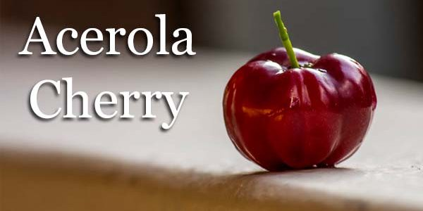 Best Acerola Cherry Powders and Extracts