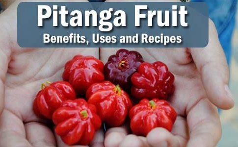 Pitanga: Health Benefits, Uses, and Recipes