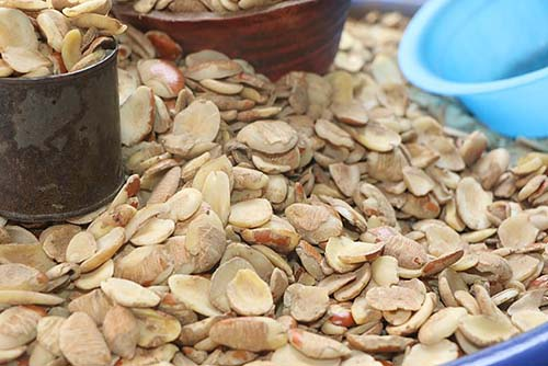 ogbono nuts superfood