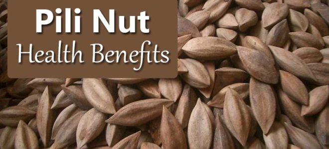 Pili Nuts: The Complete Guide to Benefits, Uses and Storage