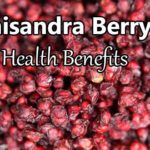 schisandra berry health benefits