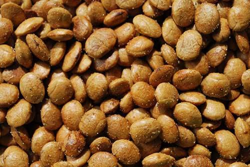 sacha inchi seeds roasted