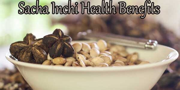 Sacha Inchi Health Benefits: Beyond Just Omega 3