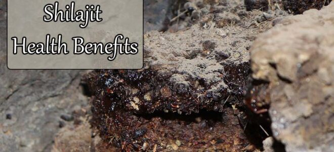 Health Benefits of Shilajit, As Backed By Science