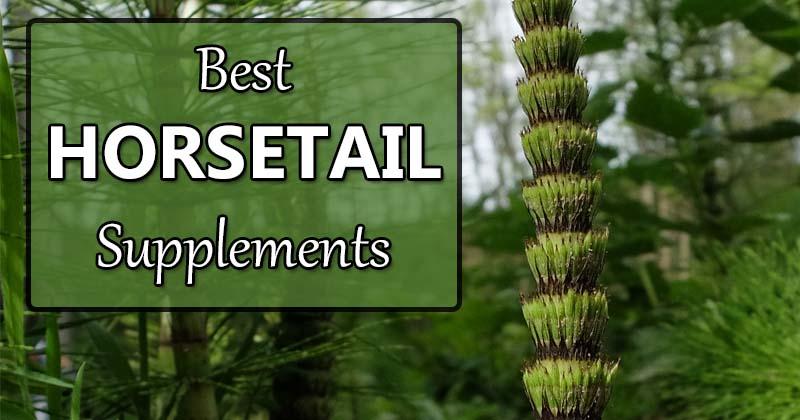 best horsetail supplements