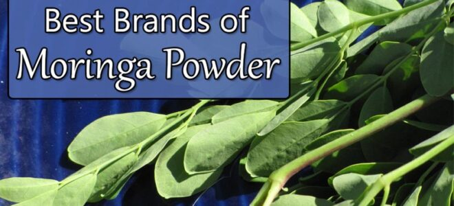 Best Moringa Powder Brands (And How to Tell the Good from the Bad)